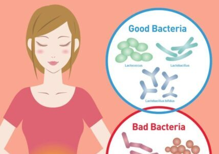 Best Probiotic Supplements for Weight Loss