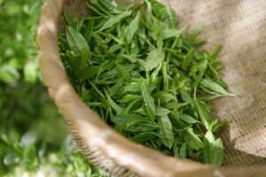 Best slimming tea for weight loss